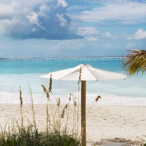 white sandy beachr